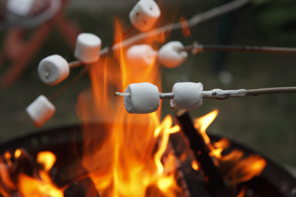 Roasting marshmallows at Fergus Scottish Festival Camping